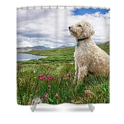 High Meadow With Eyes To The Sky Shower Curtain