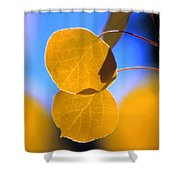 High Mountain Glory Shower Curtain