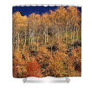 High On The Hill Shower Curtain