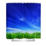 High Resolution Image Of Fresh Green Grass And Blue Sky Shower Curtain