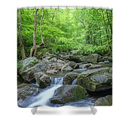 High Shoals Falls Trail In South Mountain Panorama Shower Curtain by Ranjay Mitra