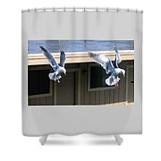 High Spirits Shower Curtain