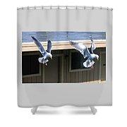 High Spirits Shower Curtain