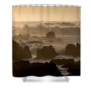 High Surf At Asilomar Beach Shower Curtain
