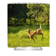 High Tailing It Shower Curtain