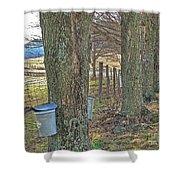 Highland County Va Virginia - Monterey - Mcdowell - Maple Harvest Shower Curtain