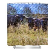 Highland Family Shower Curtain