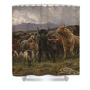 Highland Raid Shower Curtain