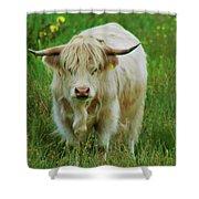 Highland White  Shower Curtain