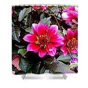 Highlands Ranch Floral Study 1 Shower Curtain