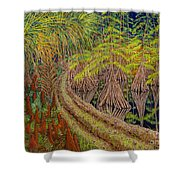 Highway 70 East Circa 1905 Shower Curtain