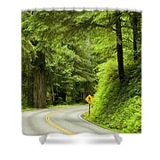 Highway Curve Shower Curtain