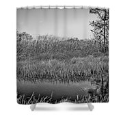 Highwaymens' Muse Shower Curtain