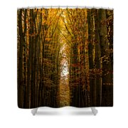 Highway To Heaven Shower Curtain