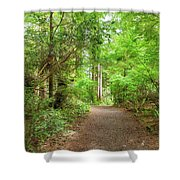 Hiking Trail Through Forest Along Lewis And Clark River Shower Curtain