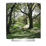 Hill 60 Cratered Landscape Shower Curtain