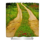 Hill Country Backroad Shower Curtain