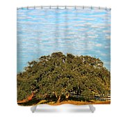 Hill Country Tree  Shower Curtain
