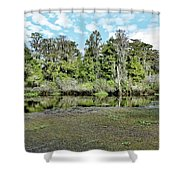 Hillsborough River 1 Shower Curtain