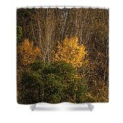 Hillside Autumn Shower Curtain