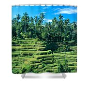 Hillside In Indonesia Shower Curtain