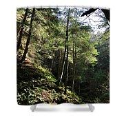 Hillside Landscape Shower Curtain