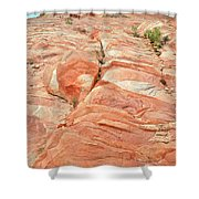 Hillside Of Color In Valley Of Fire Shower Curtain