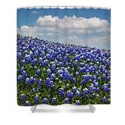 Hillside Texas Bluebonnets Shower Curtain