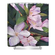 Hint Of Paradise Shower Curtain