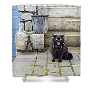 Hissing Cat Shower Curtain
