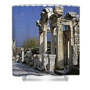 Historic Ephesus Shower Curtain