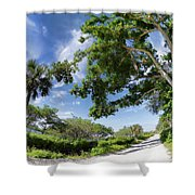 Historic Jungle Trail Vero Bch Fl IIi Shower Curtain