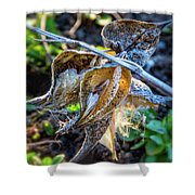 History And Hope Shower Curtain
