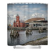 History, Art And Democracy Shower Curtain
