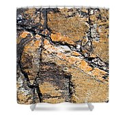 History Of Earth 4 Shower Curtain by Heiko Koehrer-Wagner