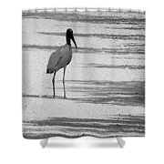 Hitch Hiker Shower Curtain