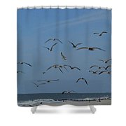 Hitchcock Comes To Long Beach, New York Shower Curtain
