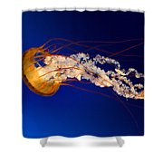 HJK Shower Curtain