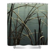 Hoar Frost On Pond 1 Shower Curtain