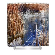 Hoar Frost On Reeds Shower Curtain