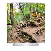 Hocking Hills Ohio Old Man's Gorge Trail Shower Curtain