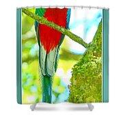 Hola Shower Curtain
