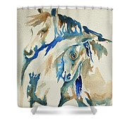Holding On     War Ponies Shower Curtain