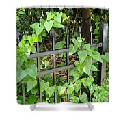 Holding To The Vine Shower Curtain