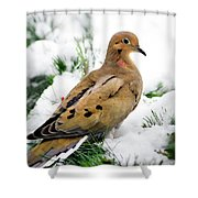 Holiday Dove Shower Curtain