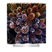 Holiday Pinecones #2 Shower Curtain
