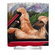 Holiday's Forever Shower Curtain by Terry  Chacon