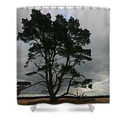 Holland Desert Shower Curtain