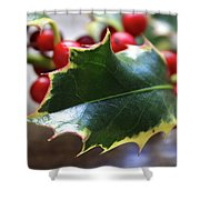 Holly Berries- Photograph By Linda Woods Shower Curtain