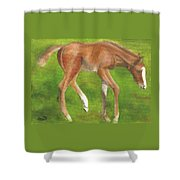 Holly Shower Curtain